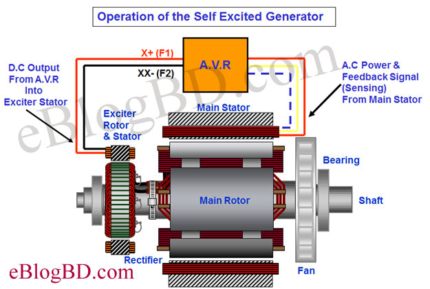 operation of self excited machine details of excitation system of alternator generator exciter diagram at n-0.co
